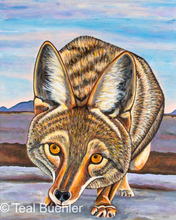 Foxy Coyote - 16 x 20 Acrylic on Canvas