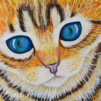 SOLD - Kitten Closeup - 6x6 Acrylic on Masonite