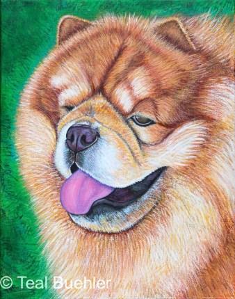 SOLD - Chow Dog - 11x14 acrylic on canvas