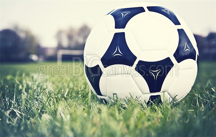 football-on-football-pitch-with-goal-in-distance-,1106634