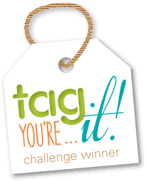 TYIC_Winner_Badge