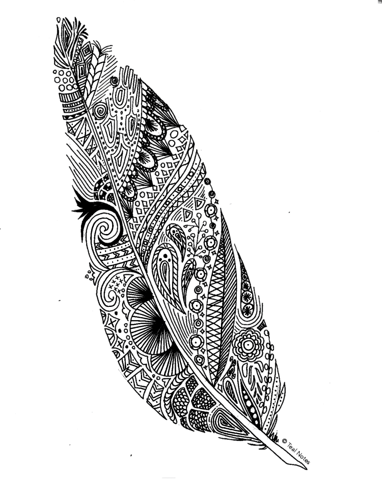 free feather coloring page for adults and kids