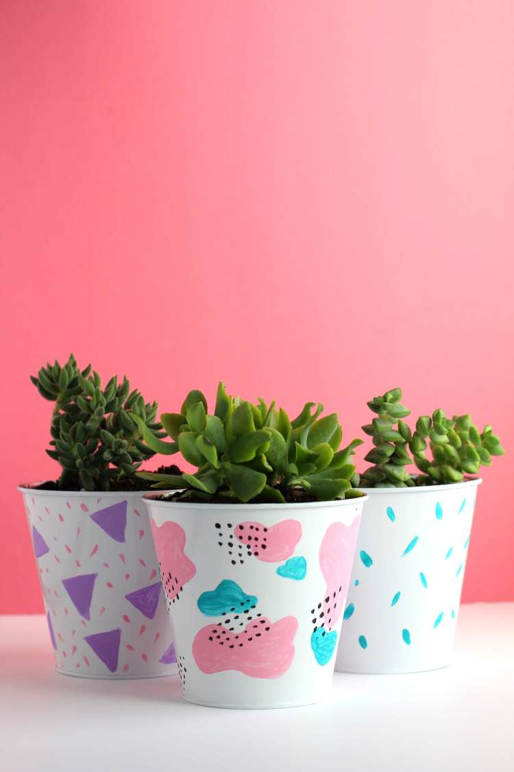 DIY Succulent planter painted and crafted to look extra cute, perfect for an indoor shelf