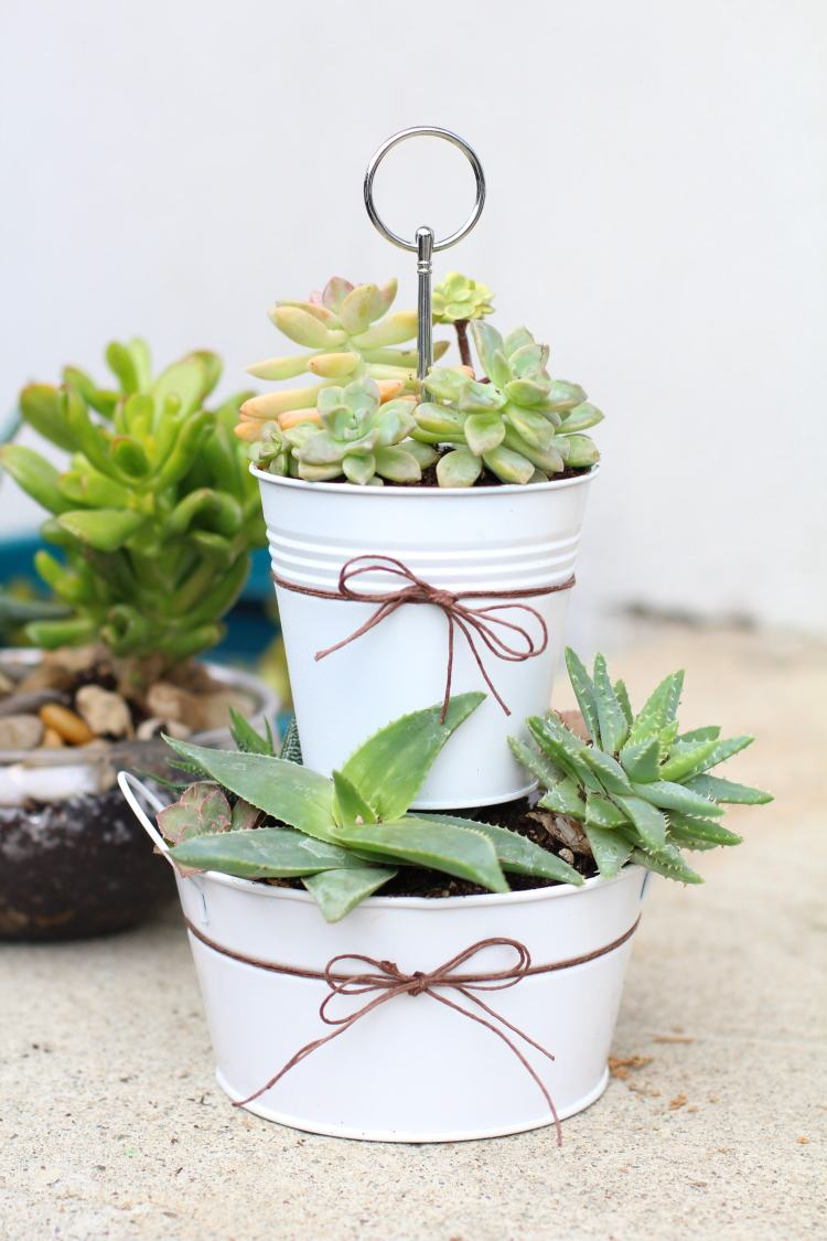 DIY tiered succulent planter