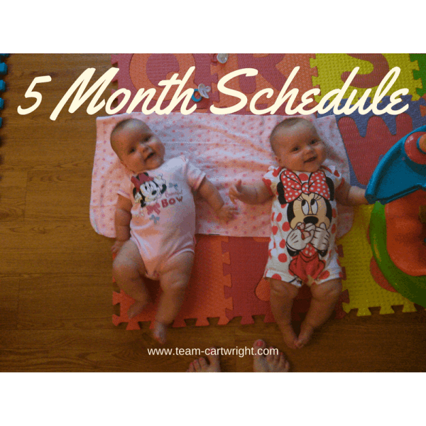5 month update and schedule