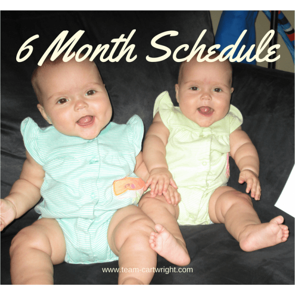 Six month schedule