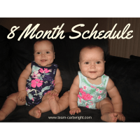 8 Month Old Twins Schedule