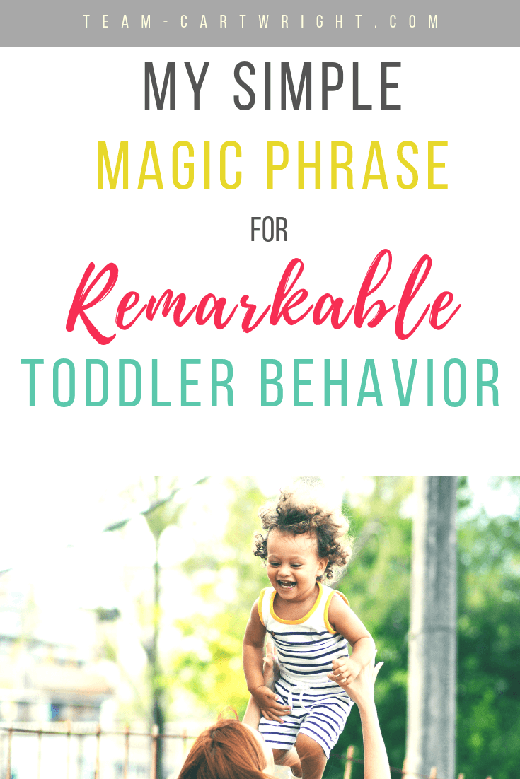 My simple magic phrase for remarkable toddler behavior. We have a mantra that reviews all the good behaviors we expect at home and out, no tantrums. Simple and effective and it can work for your toddlers too! Positive parenting works. #toddler #toddlerlife #behaviormanagement #positiveparenting #tantrums Team-Cartwright.com