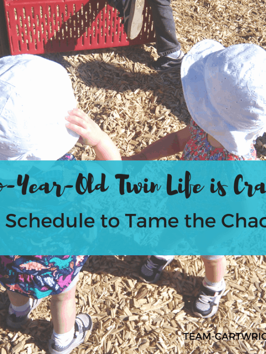 Sample Schedule for two-year-old twins. #twins #toddler #schedule #daily