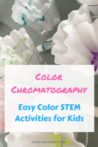 Teach your children about the chemistry of color and chromatography with an easy STEAM project. Turn it into a fun art experience while you're at it. #STEAMproject #colorscience #colorchemistry #sciencefairideas #scienceproject #summerscience #rainbowartactivity #rainbowscience #toddlerscience #preschoolscience Team-Cartwright.com