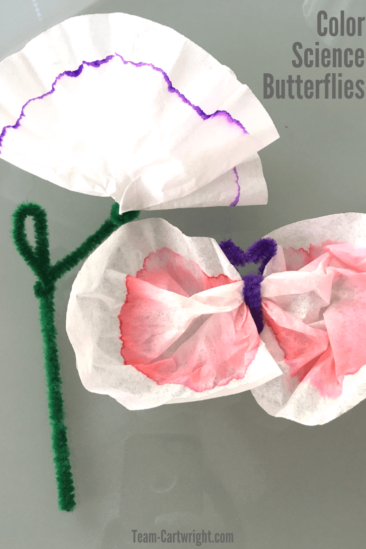 Learn how to make fun and easy homemade butterflies using color chromatography! STEM for preschoolers, toddlers, and kids. Get some markers, coffee filters, and pipe cleaners and you can do this easy experiment at home! #ColorChromatography #STEM #STEMActivities #ScienceActivities #PreschoolLearning #PreschoolSTEM #ToddlerLearning #DIYButterflies #STEAM Team-Cartwright.com