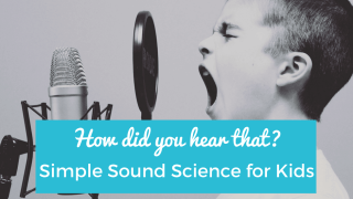 How Did You Hear That? Simple Sound Science for Kids