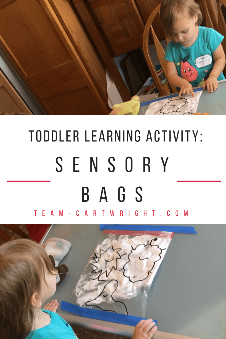 Toddler learning activity: Sensory bags! Make easy and fun monster sensory bags and help your toddler work on fine motor skills, counting, number sense, and creativity! Easy to make and easy to clean up. #learningactivity #sensoryactivity #sensorybag #finemotorskills #toddler #preschooler #countinggame #numbersense Team-Cartwright.com