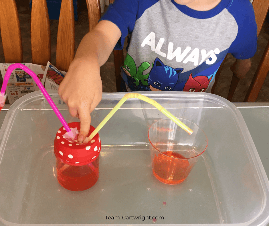Make an easy heart pump model with your kids! Study the cardiovascular system and put together this simple science experiment to demonstrate how the heart pumps blood through the human body. STEM for kids! #STEM #Science #Anatomy #ScienceFair #HeartScience #Cardiovascular Team-Cartwright.com