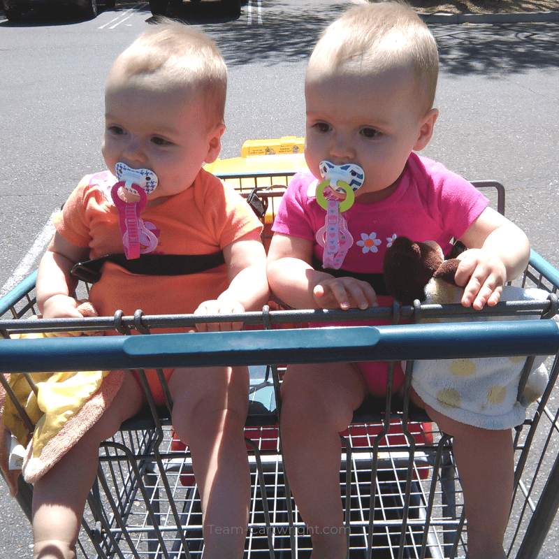 picture of twin babies in a shopping cart