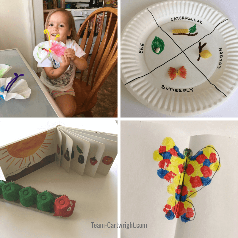 Butterfly STEAM activities for preschoolers