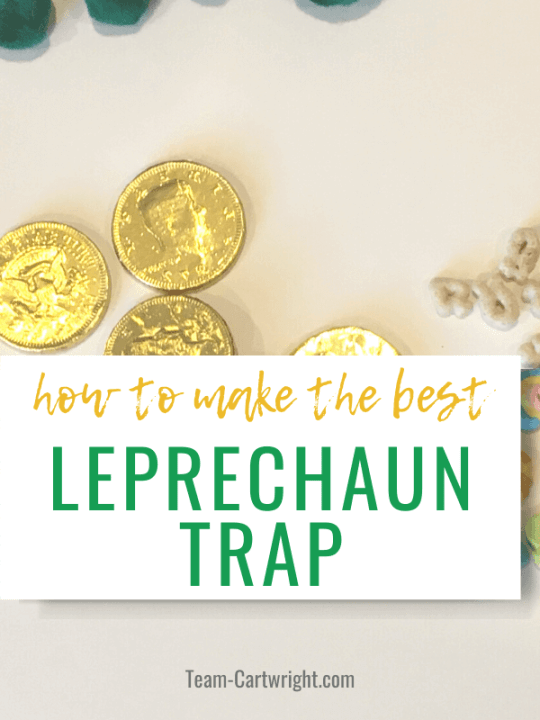 how to make the best leprechaun trap