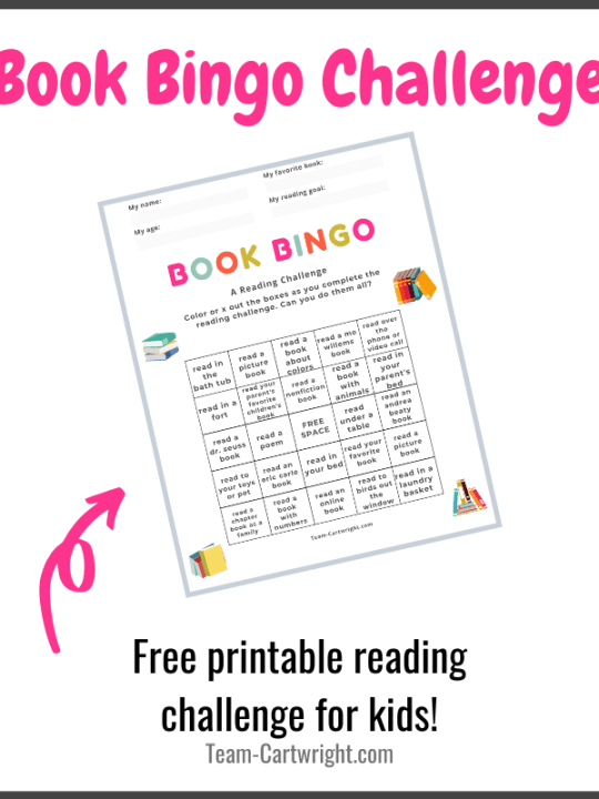 Book Bingo Reading Challenge for Kids