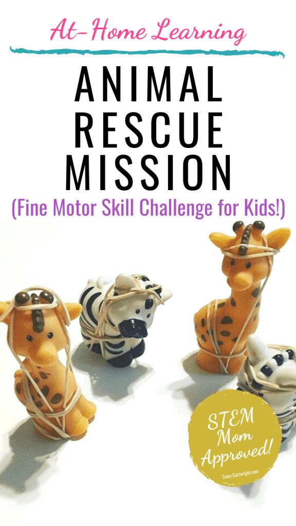 Fine Motor Skill Practice Animal Rescue Mission