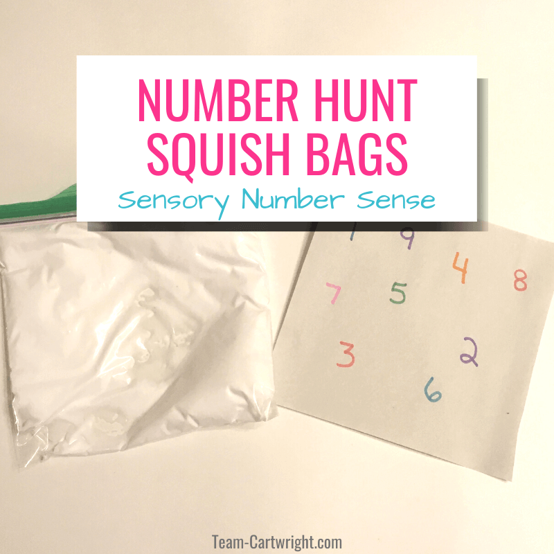Number hunt squish bags Sensory Number Sense with picture of baggie of shaving cream for sensory play and number page to put under