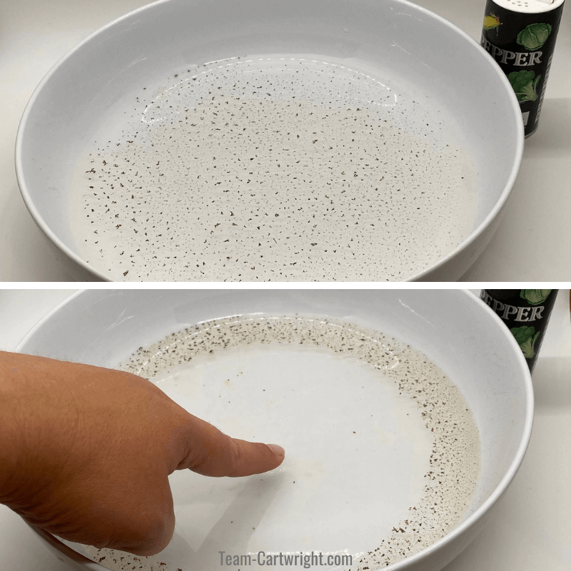 Top picture: Dish full of water with pepper on the water. Bottom picture: hand touching the surface with soap on their finger making the pepper spread to the edges