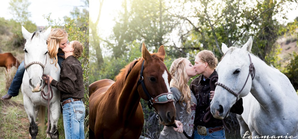 0 web two kiss horse