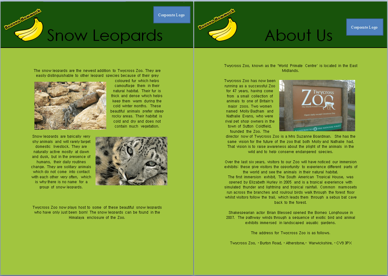 About Us Snow Leopards And Worksheet Maze