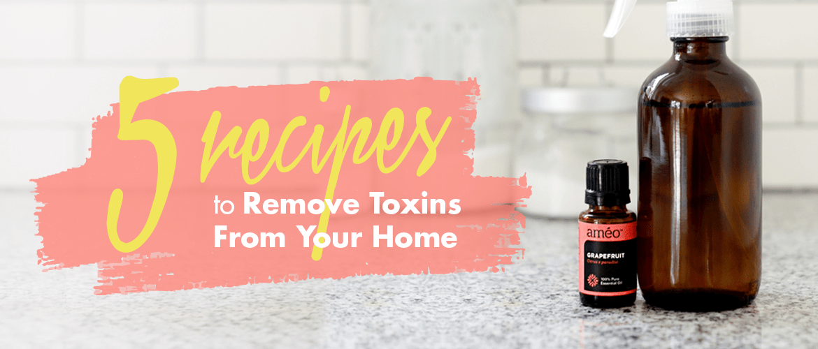 5 Recipes to Remove Toxins from Your Home