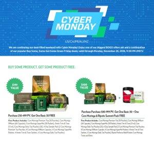cyber-monday-flyer
