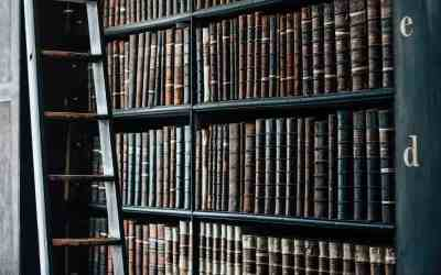 Waarom kennis niet genoeg is