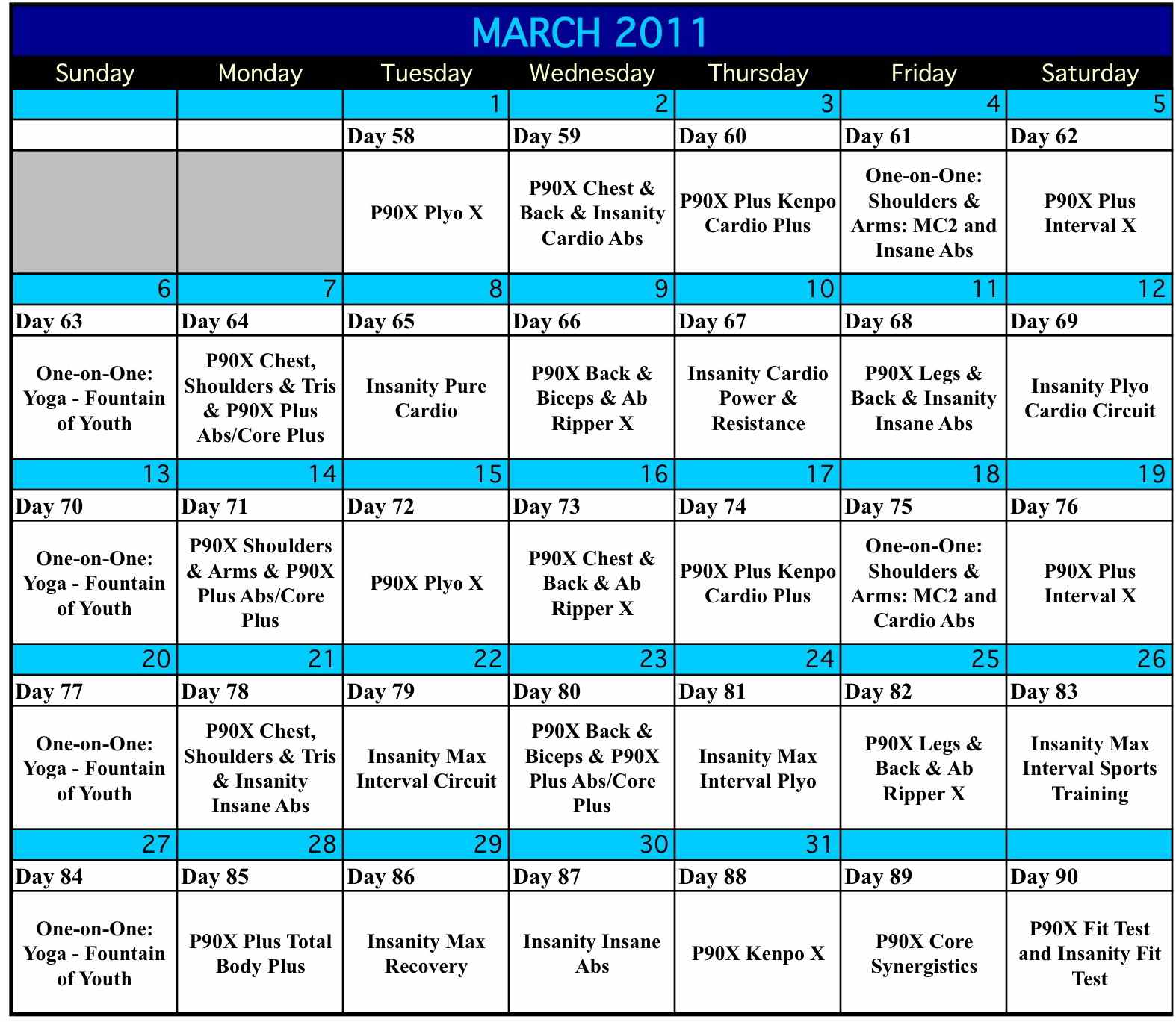 P90x And Insanity Hybrid Workout Schedule Eoua Blog