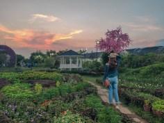 The Garden Travel DIY