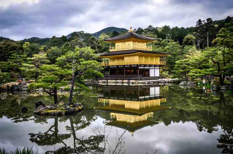 Kinkakuji golden temple in Kyoto, Japan. Want to learn Japanese? Find the best online Japanese course at Team Japanese