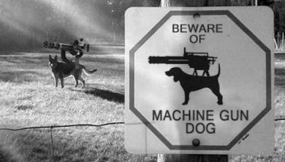 Beware of Machine Gun Dog