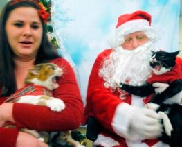 41 Funny Awkward Family Christmas Photos For Ho Ho Holiday Laughs!