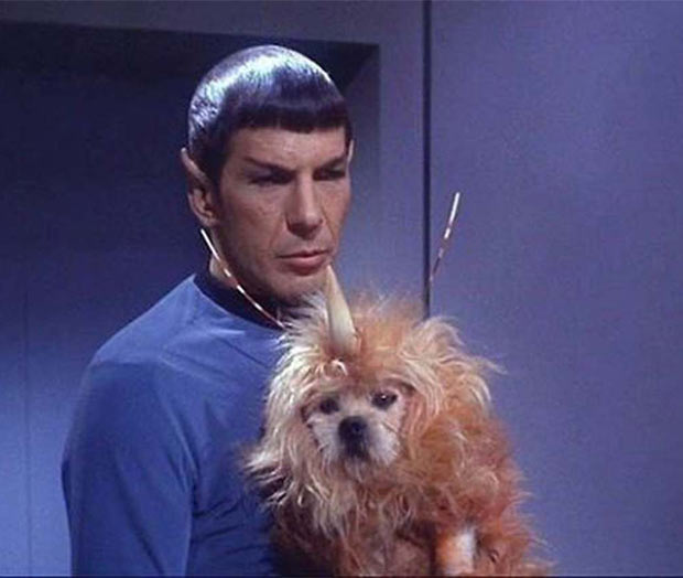 Spock and alien dog ~ now that's high tech special effects
