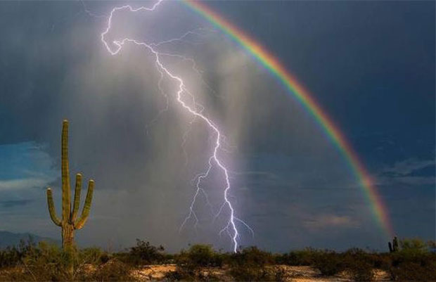 Cool desert rainstorm cactus, lightening, rainbow