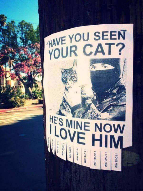 Funny Lost Cat Sign.