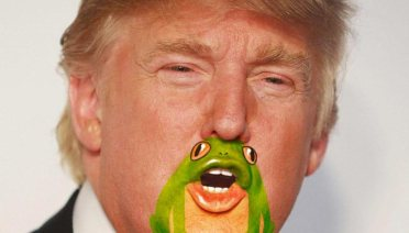 11 Funny Pics of Donald Trump's Frog Chin