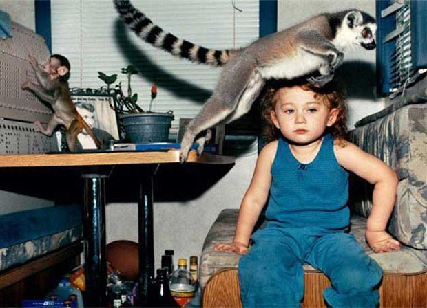 Ring with the Nelsons was always an exotic adventure. ~.~ Awkwardly funny family portrait emu baby monkey