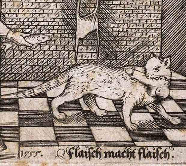 Old medievil illustration, cat with penis in mouth