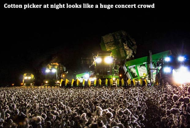 Rock, On, Cotton Field~ funny meme, optical illusion, cotton picker at night looks like concert crowd, funny pics