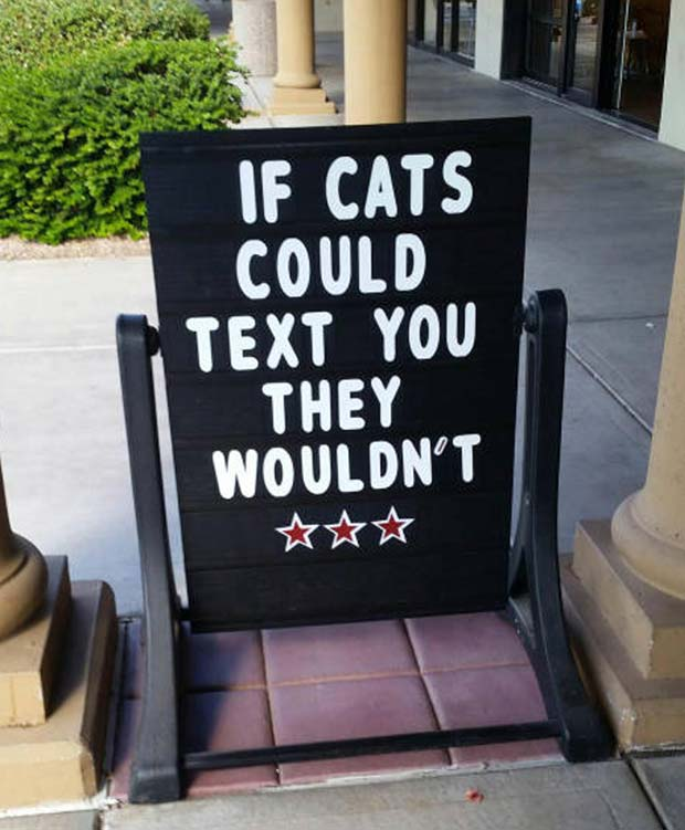 So true... ~ Funny Sidewalk Signs ~ if cats could text they wouldn't