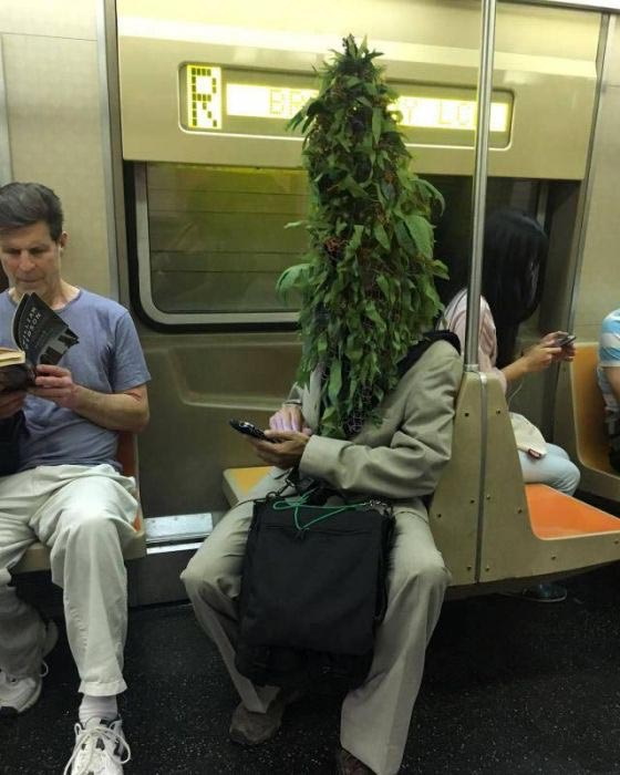 Why I don't ride public transportation ~ Man on subway with plant head