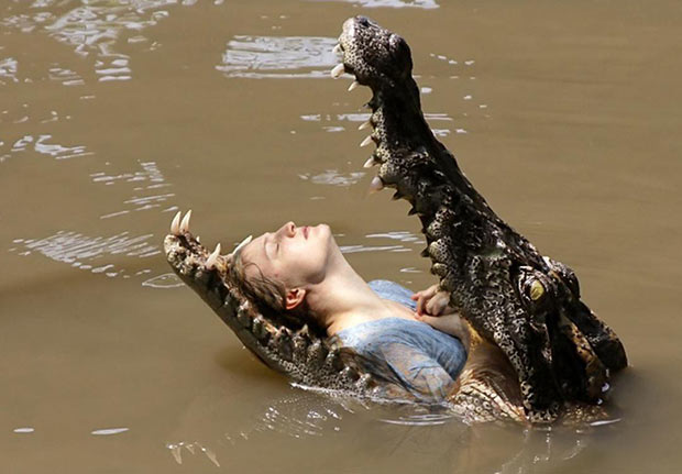 Unsettling Beaty ~ woman in alligators mouth ~.~ funny pics, funny memes