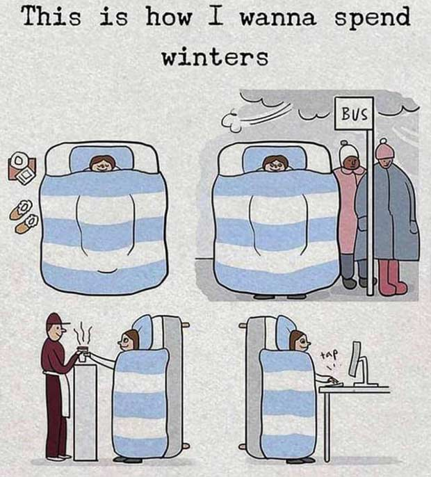 35 Funny Memes and Random Pics to Boost Your Humor Level... how I spend winters, in bed
