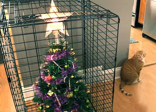 21 Brilliant Ways to Save Christmas Tree from Pets