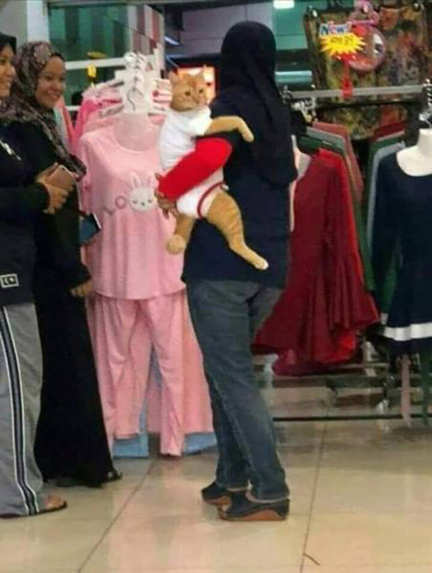 35 Funny Memes and Random Pics to Fuel Your Humor ~ woman shopping with cat n clothes