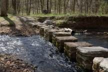 Stone Springs