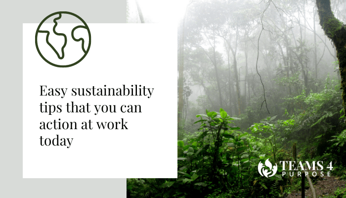 Easy sustainability tips that you can action at work today